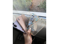 apple-iphone-xs-max-in-eltham-for-sale-small-0